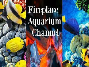 Fireplace Aquarium Channel