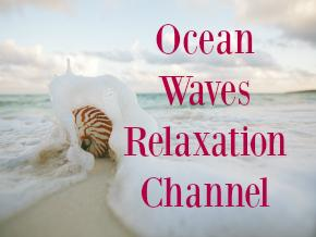 Ocean Waves Relaxation Channel