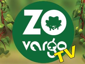 Zovargo TV
