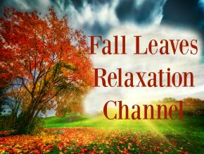 Fall Leaves Relaxation Channel