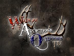 WAO-TV