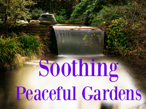 Soothing Peaceful Gardens